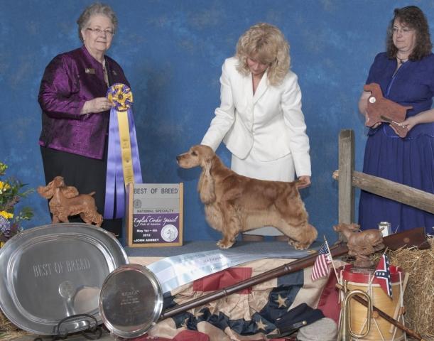 2012 - Ch. Golden Gait's Never Lose Hope ECM